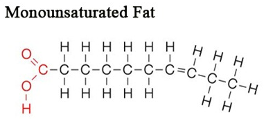 monosaturated_fat